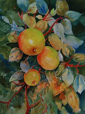 Painting - Green Apples by Marilyn  Clement