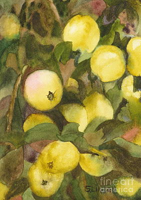 Green Apples Art Print by Sandy Linden
