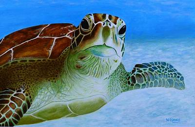 Painting - Green Back Turtle by David Hawkes