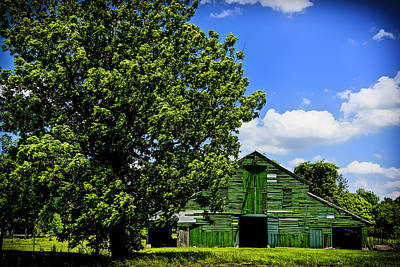 Photograph - Green Barn Baton Rouge La Dsc04443 by Greg Kluempers