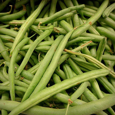 Photograph - Green Beans by Joseph Skompski