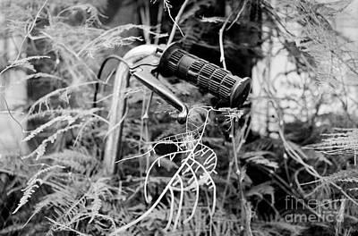 Photograph - Green Bike by Dean Harte