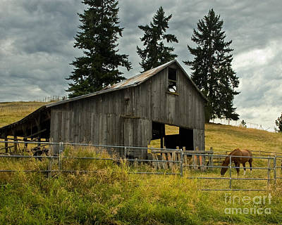 Green Bluff Horsebarn Art Print