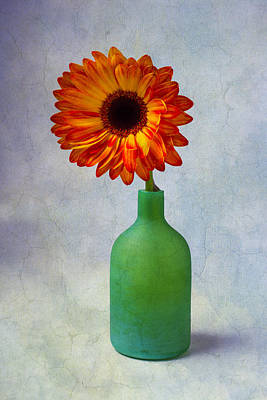 Green Bottle With Orange Daisy Art Print by Garry Gay