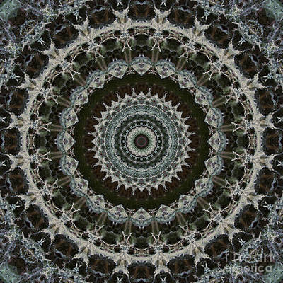 Green Brown Mandala Art Print by Kathi Shotwell
