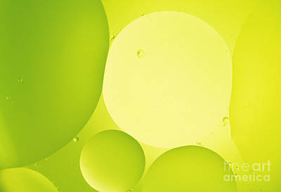 Photograph - Green Bubbles by Angela Bruno