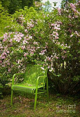 Photograph - Green Chair by Lena Auxier