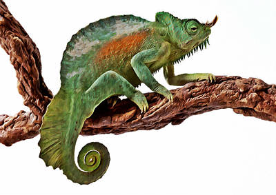 Hidden Objects Painting - Green Chameleon by Lanjee Chee