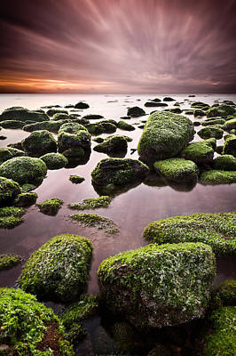 Core Photograph - Green Chaos by Jorge Maia