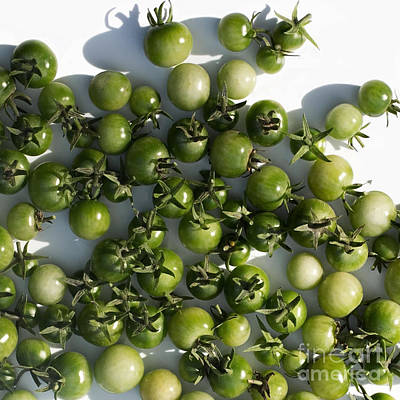 Photograph - Green Cherry Tomatoes Unfried by Barbara McMahon
