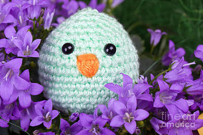 Amigurumi Photograph - Green Chick Sit In Purple Flower by Ralph Schmaelter