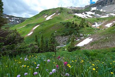 Photograph - Green Colorado Summer by Cascade Colors