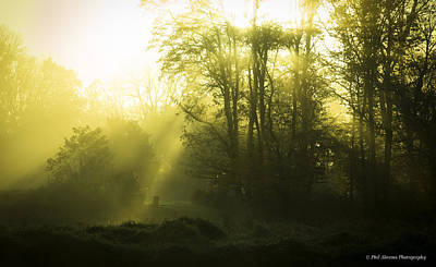Art Print featuring the photograph Green Dawn by Phil Abrams