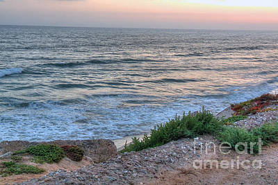Green Dog Beach Coastline Art Print by Deborah Smolinske