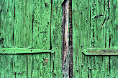 Green Door Art Print by Steve Archbold