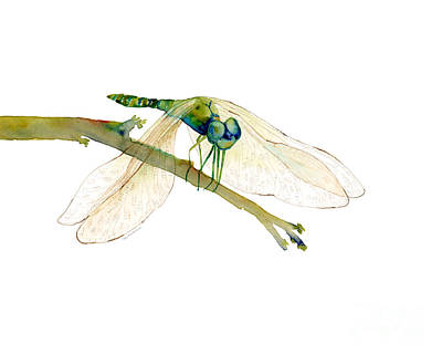 Dragonflies Painting - Green Dragonfly by Amy Kirkpatrick