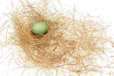 Photograph - Green Egg In A Bird Nest by Jennie Marie Schell