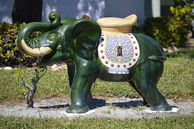 Decorative Photograph - Green Elephant  by Doug Grey