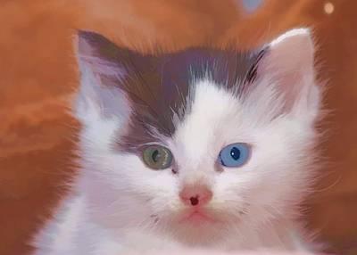Photograph - Green Eye Blue Eye  by Audreen Gieger
