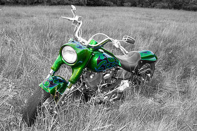 Photograph - Green Fat Boy by Guy Whiteley