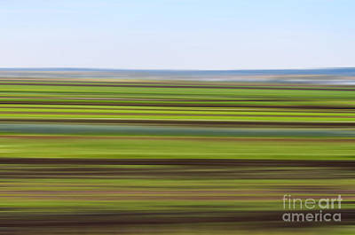 Photograph - Green Field Abstract by Les Palenik