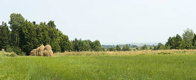 Green Field Panorama Art Print