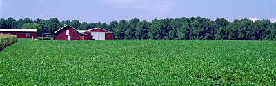 Photograph - Green Field With Barn by Panoramic Images