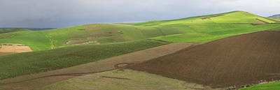 Fes Photograph - Green Fields Near Fes, Moulay Yacoub by Panoramic Images