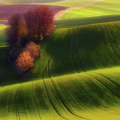 Rolling Photograph - Green Fields by Piotr Krol (bax)