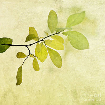 Green Foliage Series Art Print by Priska Wettstein
