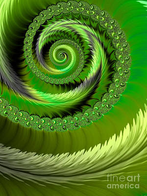 Curves Digital Art - Green Fronds by John Edwards