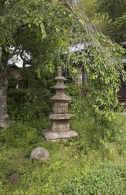 Photograph - Green Garden by Masami Iida