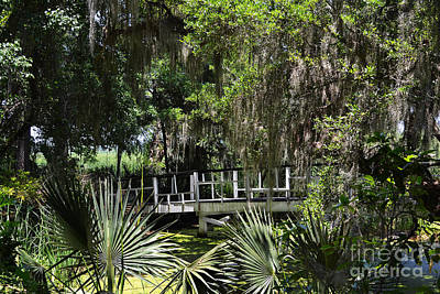 Green Gardens At Magnolia Plantation Art Print