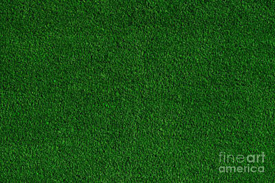 Colored Photograph - Green Grass Field Background by Michal Bednarek