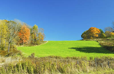 Photograph - Green Hay Field And Autumn Trees In Maine by Keith Webber Jr