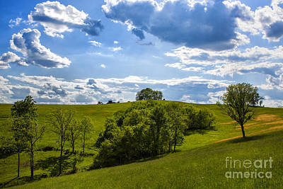 Photograph - Green Hill by Rick Bragan