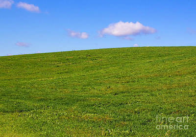 Photograph - Green Hill With Blue Sky by Barbara McMahon