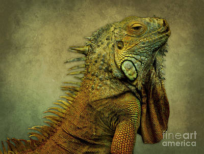 Dragon Digital Art - Green Iguana by Liz Molnar