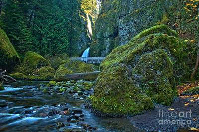 Photograph - Green In The Gorge by Adam Jewell