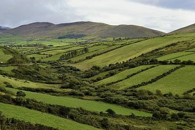 Photograph - Green Is My Irish Valley by Nadalyn Larsen