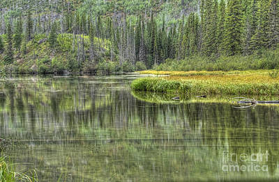 Photograph - Green Lake by Wanda Krack