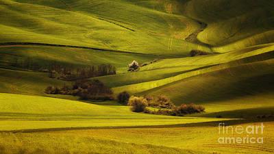Green Land Print by Jaroslaw Blaminsky