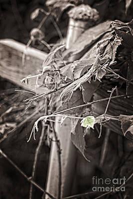Faith Hope And Love Digital Art - Green Leaf by Ella Kaye Dickey