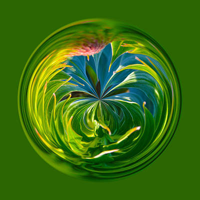 Photograph - Green Leaf Orb by Brent Dolliver