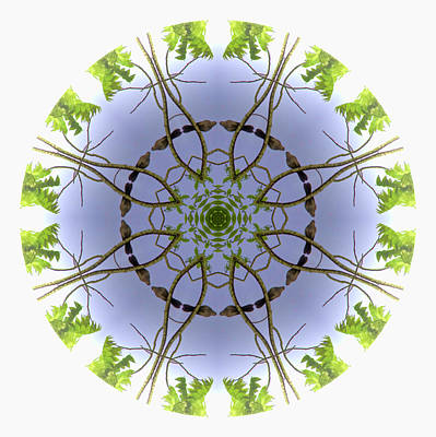 Photograph - Green Leaves Mandala 2 by Beth Sawickie