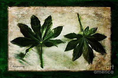 Photograph - Green Leaves by Randi Grace Nilsberg