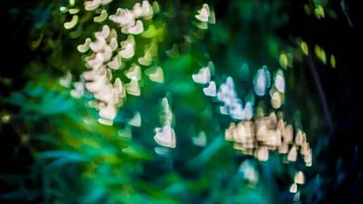 Green Love Print by Girish Veetil