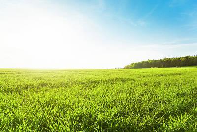Photograph - Green Meadow by Brzozowska