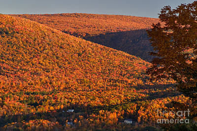 Photograph - Green Mountain Slopes At Sunset by Charles Kozierok
