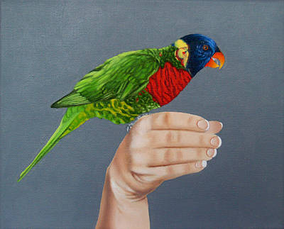 Fauna Painting - Green Naped Lorikeet by Jason M Silverman